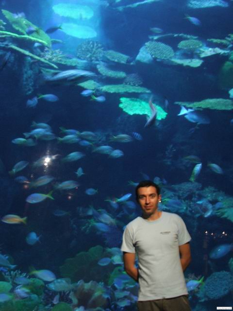 Me, posing in front a Siam Ocean World aquarium